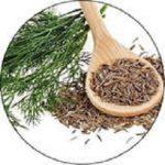 hamyartest - همیار تست - نمونه سوال و آزمون آنلاین - سوال فنی و حرفه ای - پرورش گیاهان دارویی