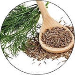 گیاهان دارویی 1